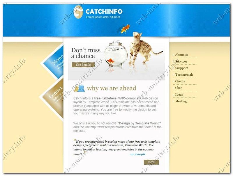 Шаблон сайта Catch Info