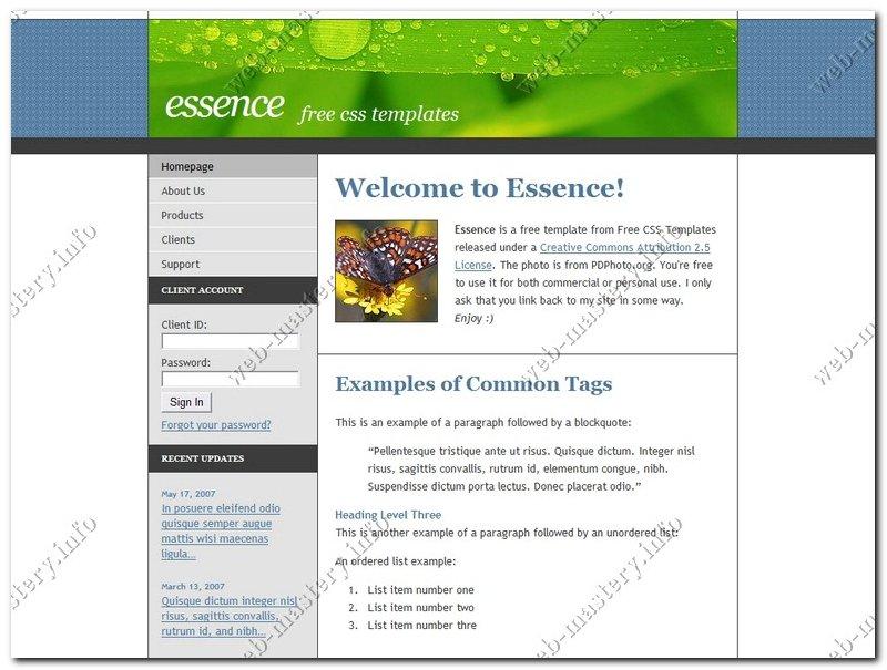 Дизайн сайта Essence (Сущность)