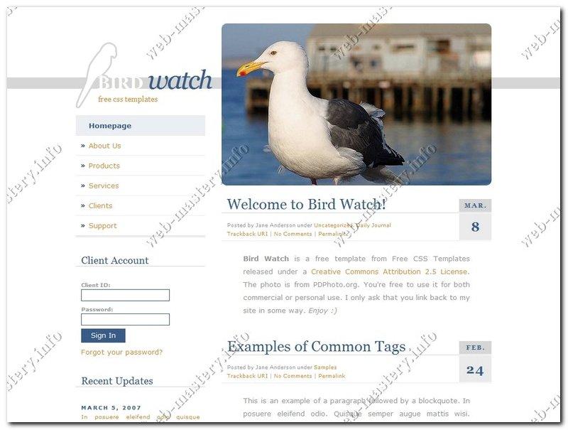 Готовый сайт Bird Watch