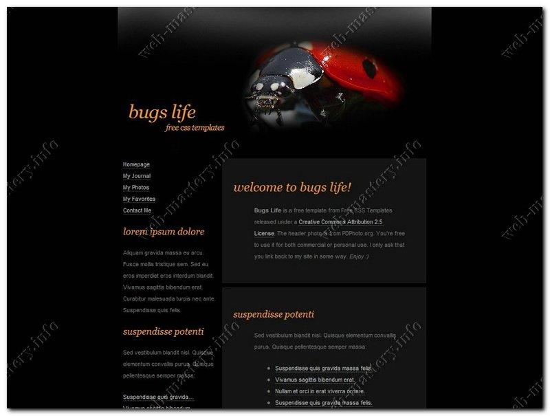 Сайт хакеров (Bugs)