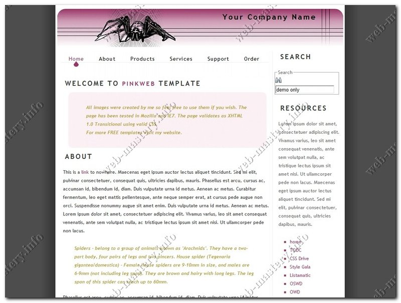 Дизайн сайта Pink Web